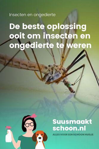 insecten bestrijden | insecten verjagen | insecten weren | ongedierte bestrijden | ongedierte in huis | ongedierte bestrijding
