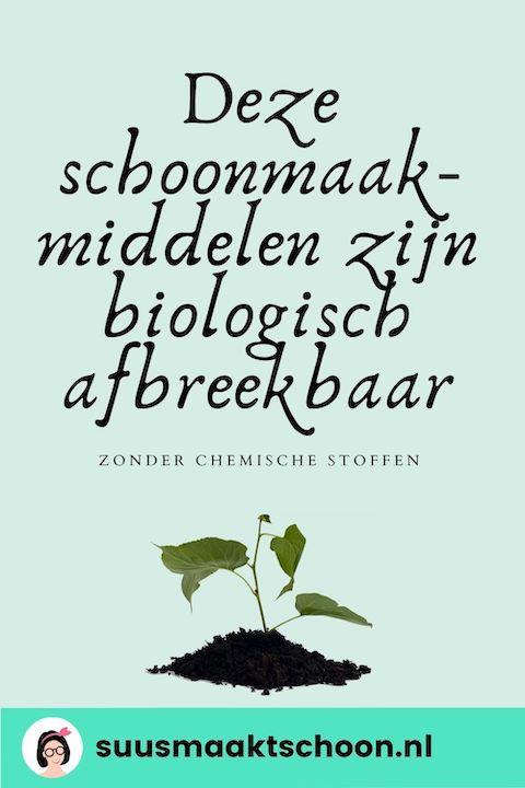 ecologisch leven |  ecologisch schoonmaken | ecologisch huishouden | ecologisch poetsen | milieuvriendelijk leven | milieuvriendelijk schoonmaken | natuurlijk leven | | natuurlijk wasmiddel | natuurlijke schoonmaakmiddelen