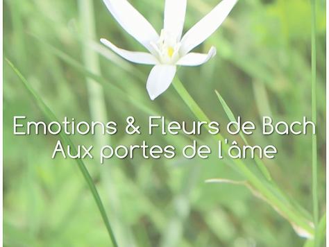 """Film : """"Emotions & Fleurs de Bach, aux portes de l'âme"""""""