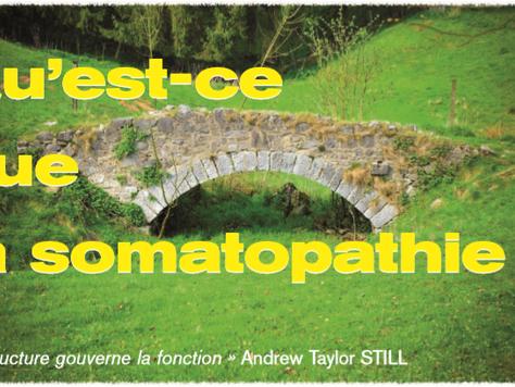Qu'est-ce que la somatopathie ?
