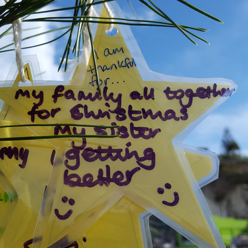 Star on the Thankul Tree