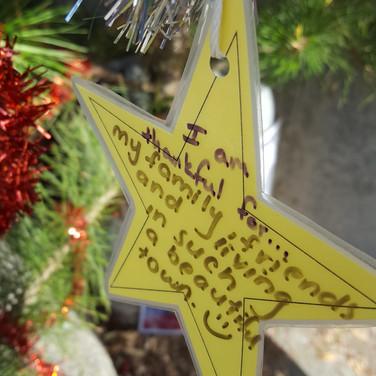 Star on the Thankfulness Tree