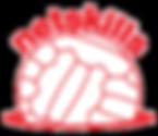 netskills_red_logo.png