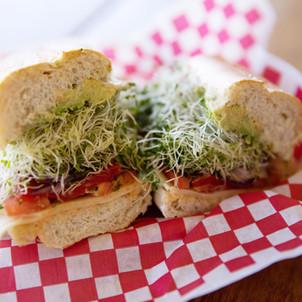Campini's sandwiches