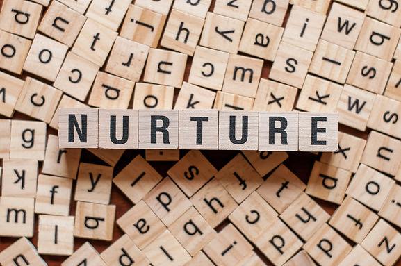 the word of NURTURE on building blocks c