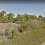 Thumbnail: Port Charlotte - 4177 Amoroso St