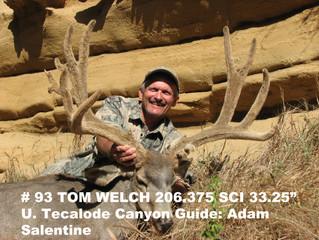 # 93 Santa Rosa Island Mule Deer Buck-- Tom Welch