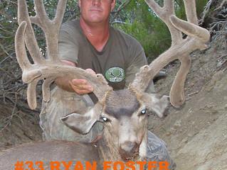 #33 RYAN FOSTER Top 100 Santa Rosa Island Mule Deer Bucks