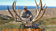 # 8 MARK BUCHANAN Top 100 Santa Rosa Island Mule Deer Bucks