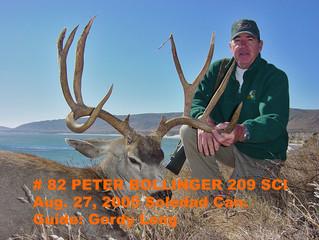 #82 Santa Rosa Island Mule Deer Buck- Peter Bollinger