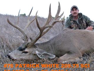 #76 Santa Rosa Island Mule Deer Buck-- Patrick White