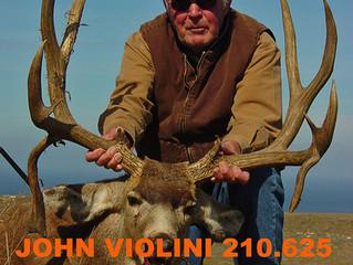 #71 Santa Rosa Island Top 100 Buck-  John Violini
