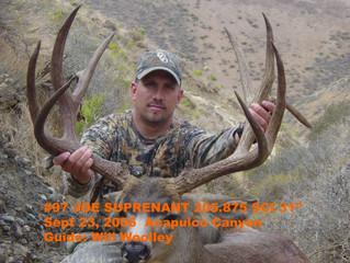 #97 Santa Rosa Island Mule Deer Buck-- Joe Surprenant