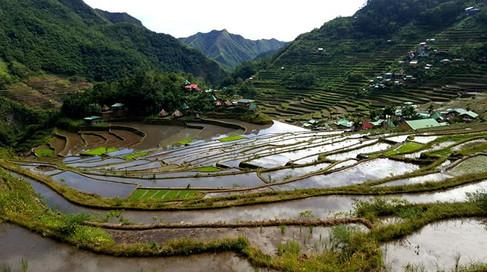 Batad Rice Terraces, Luzon