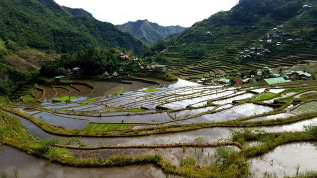 Batad Rice Terraces, Luzon