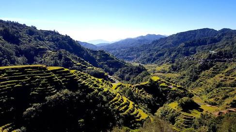 Banaue Rice Terraces, Luzon
