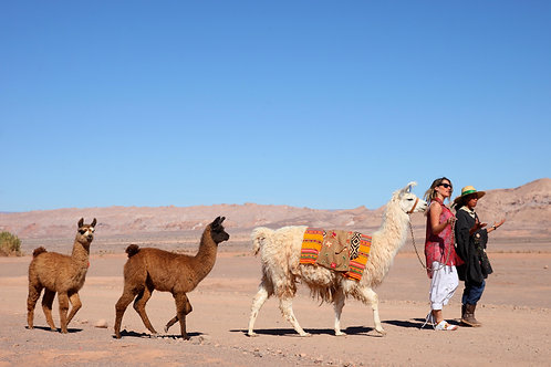 CHILE NATURAL  - C/Hospedagem - 7D/6N (Atacama + Ilha de Páscoa)