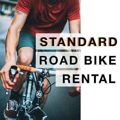 Online Bike Rental - Road Bike (16/18-Speed)