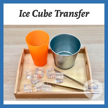 Montessori Ice Transfer