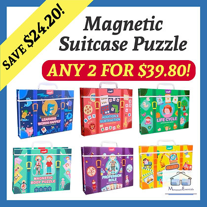Magnetic Suitcase Set