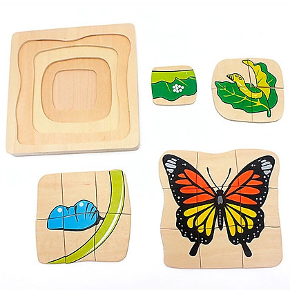 Montessori Butterfly Life Cycle Puzzle