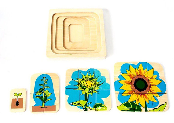 Montessori Sunflower Life Cycle Puzzle