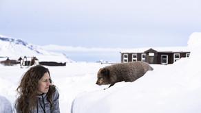 15: Žiju vedle polárních lišek