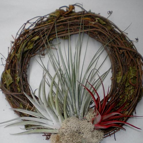 "10"" Wreath"