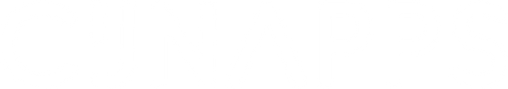 logo_sans_solution_ai_tout_blanc.png