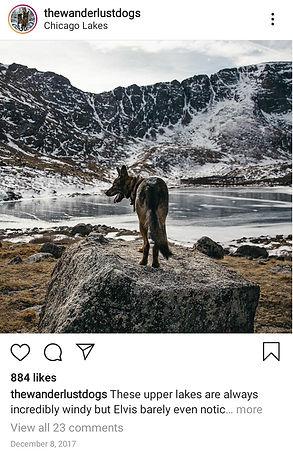 Screenshot_20200116-183054_Instagram.jpg