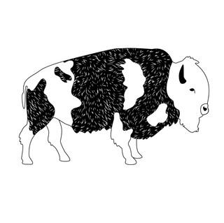 BuffaloArtwork-06.jpg