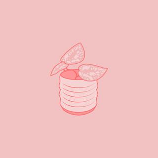 littleplant-01.jpg