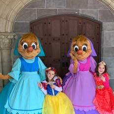A Disney World