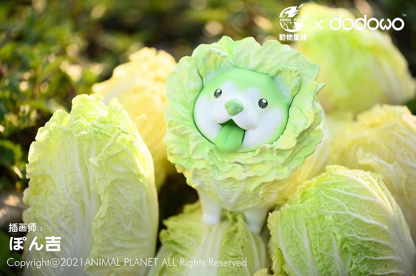 Animal Planet X Dodowo - Vegetable Dog