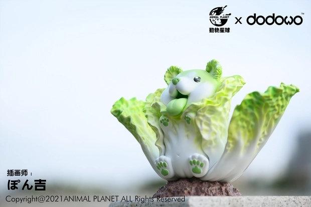 Animal Planet X Dodowo Studio Cabbage Puppy