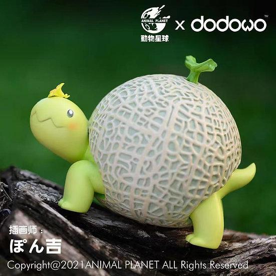 Animal Planet X Dodowo - Melon Tortoise