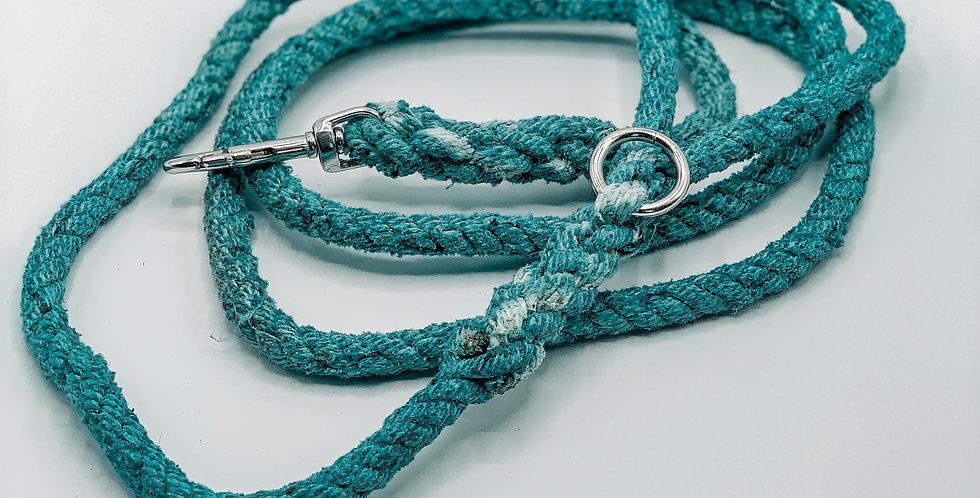 Seadog Blue