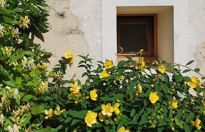 gite La Bernache, le jardin