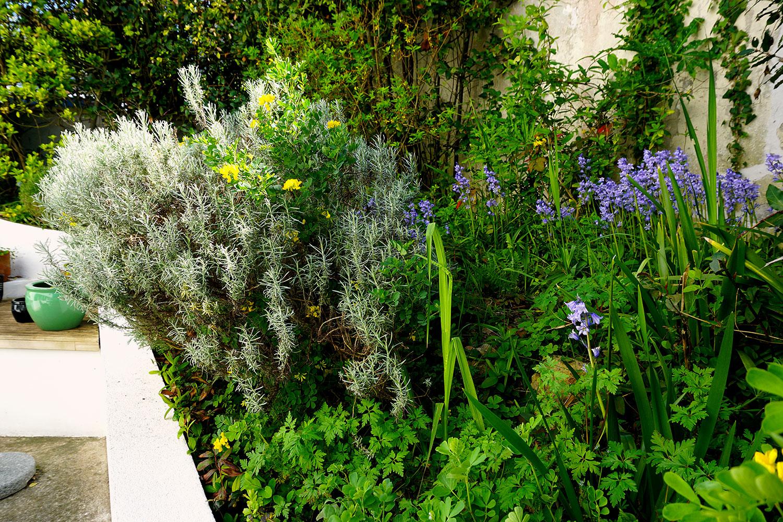 L'Aigrette, le jardin