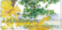 FB-MIMOSA-2020.jpg