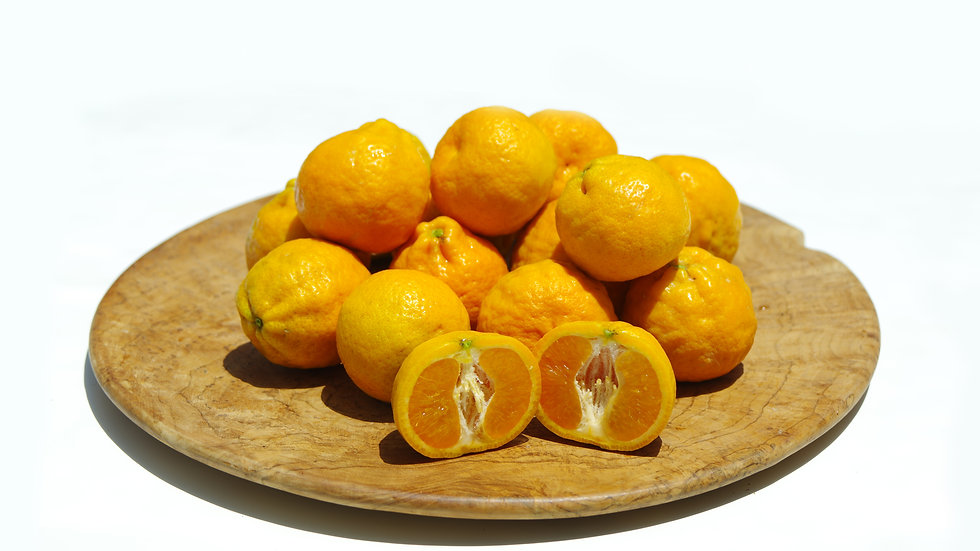 Pixie Tangerines from the Ojai Valley