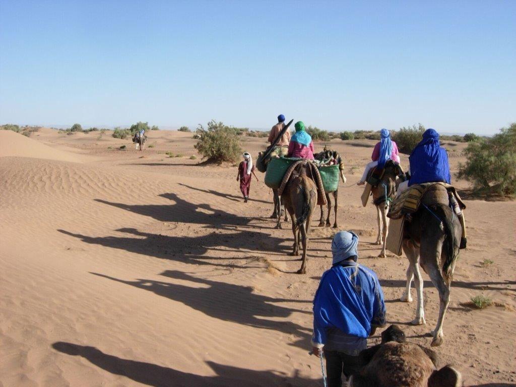 Gastdozent in der Sahara