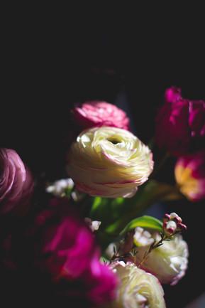 Photos fleurs Nyon.JPG
