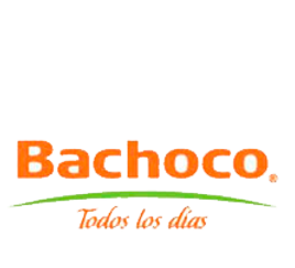 bachoco-png-5.png