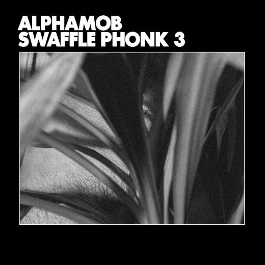 AlphaMob Swaffle Phonk 3 Cover.jpg