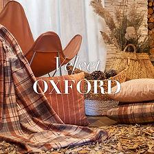 VELVET OXFORD.jpg