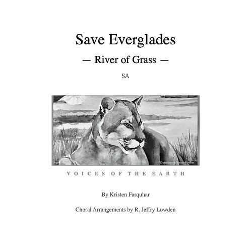 Music SA: Save Everglades - River of Grass