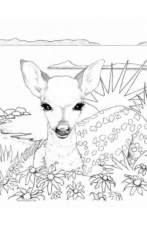 CPP Key Deer