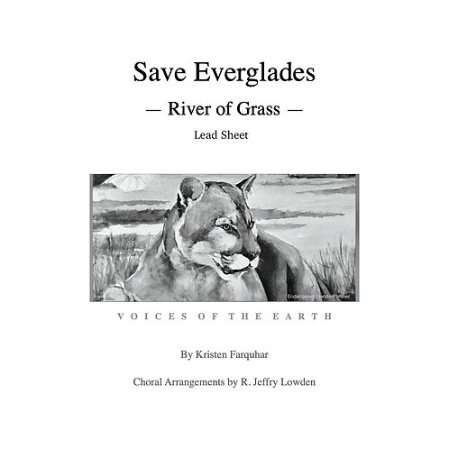 Lead Sheet: Save Everglades - River of Grass
