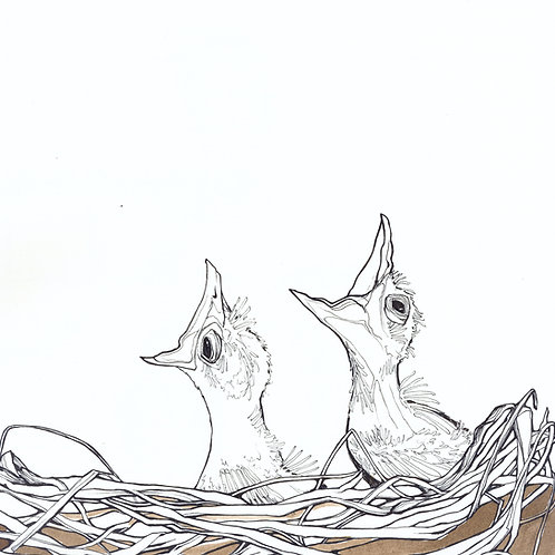 Robin Nestlings print